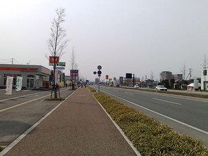 20090412951s.jpg